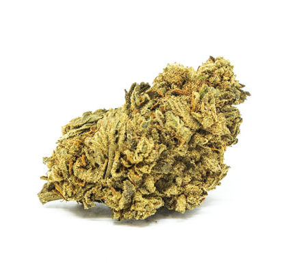 fleur de white widow cannabis CBD