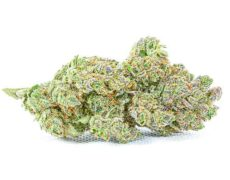 Gorilla Glue cbd weed inflorescences