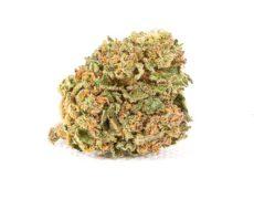 Orange Bud fleur de CBD pas cher