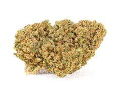 Fleur de Cbd Mango Haze