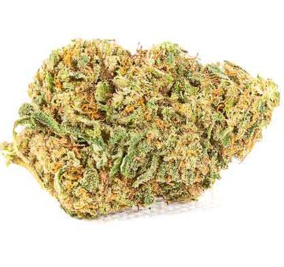 Flower of cbd weed Master kush