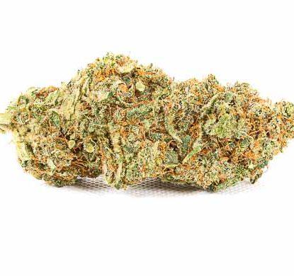 Infiorescenze di cannabis light Bubblegum