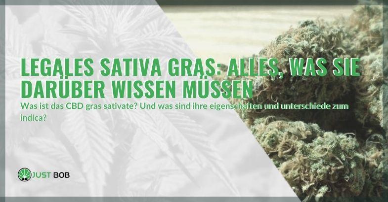 Legal Sativa Gras: Alles, was sie darüber wissen müssen