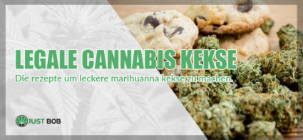 Legale Cananbis Kekse: Die rezepte um leckere marihuanna kekse zu machen
