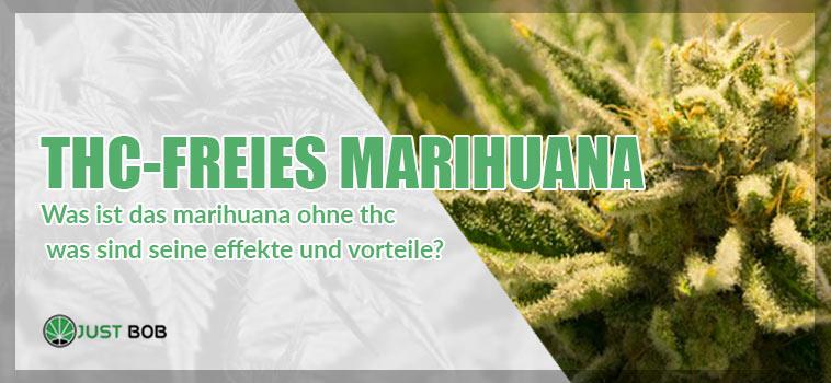 Was ist das Marihuana ohne thc was sind seine effekte und vorteile?