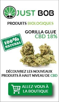 bandeau fleur de CBD Gorilla Glue