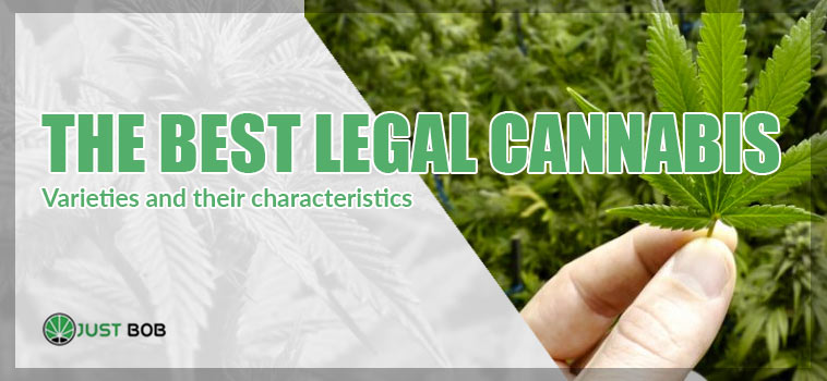 best legal cannabis