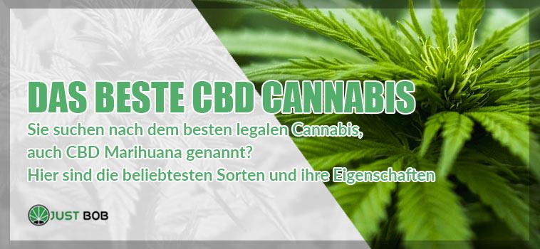 die beste cbd cannabis