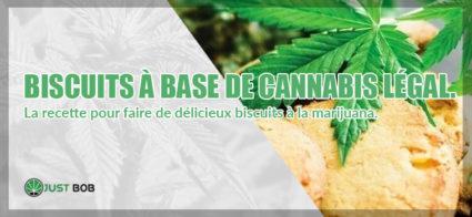 Biscuits à base de cannabis légal