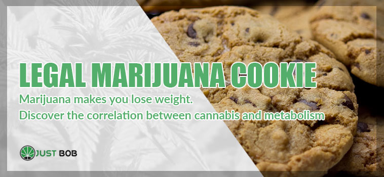Marijuana makes you lose wieght. Discover the correlation between cannabis and metabolism