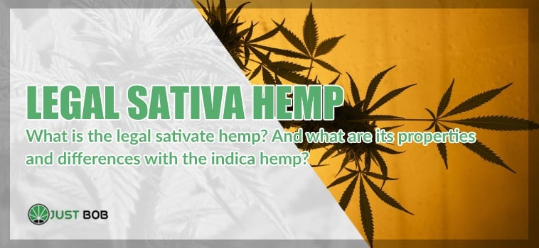 What is the legal sative hemp?
