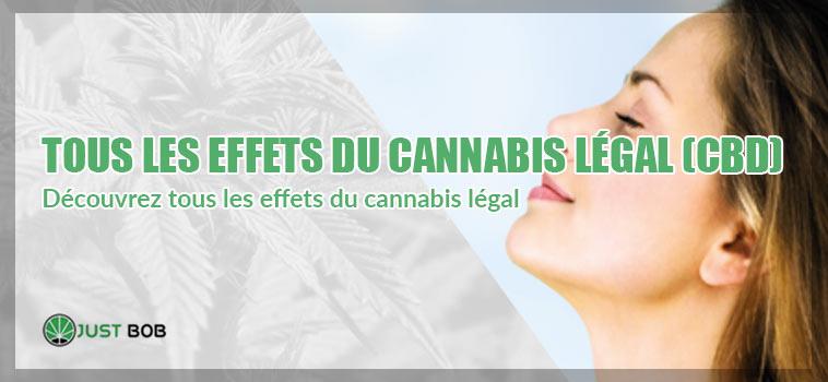 Découvrez tous les effets du cannabis légal