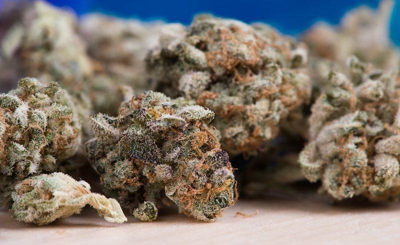Wie man eine Marihuana-Lisane macht?
