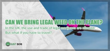 CBD Cannabis: can we bring legal marijuana on the plane?