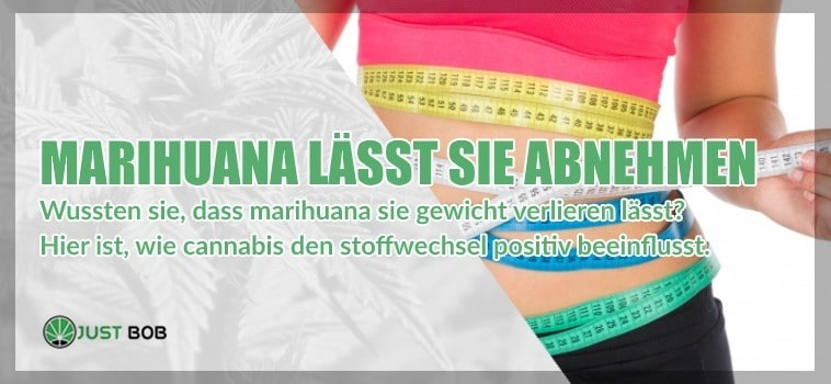 Cannabis CBD lässt sie Abnehmen