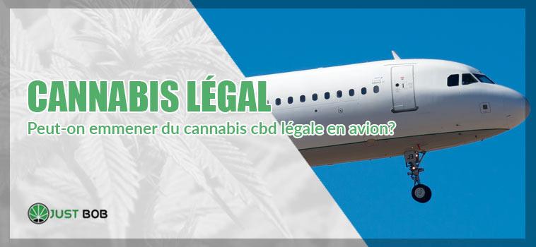 CBD Cannabis: peut-on emmener du cannabis cbd légale en avion?
