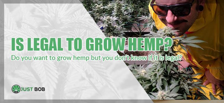 Is legal to grow hemp?