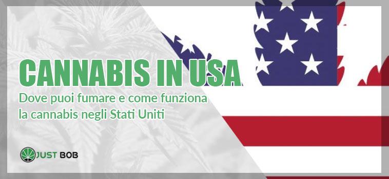 Dove puoi fumare e come funziona la cannabis negli Stati Uniti