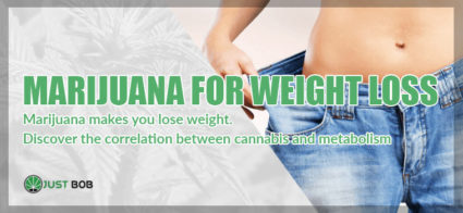 CBD Cannabis makes you lose weight