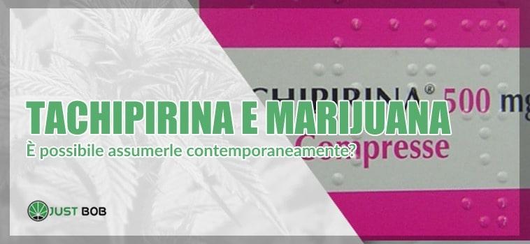 Si possono assumere contemporaneamente tachipirina e marihuana legale?