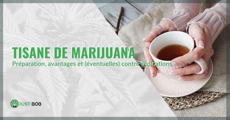 Tisane de Marijuana au cannabis CBD