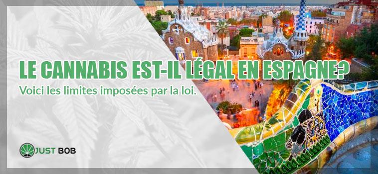 Le cannabis est-il légal en Espagne?