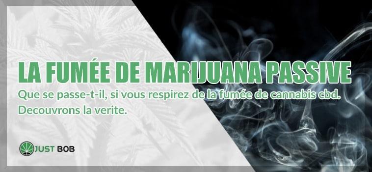 La fumée de mariijuana passive