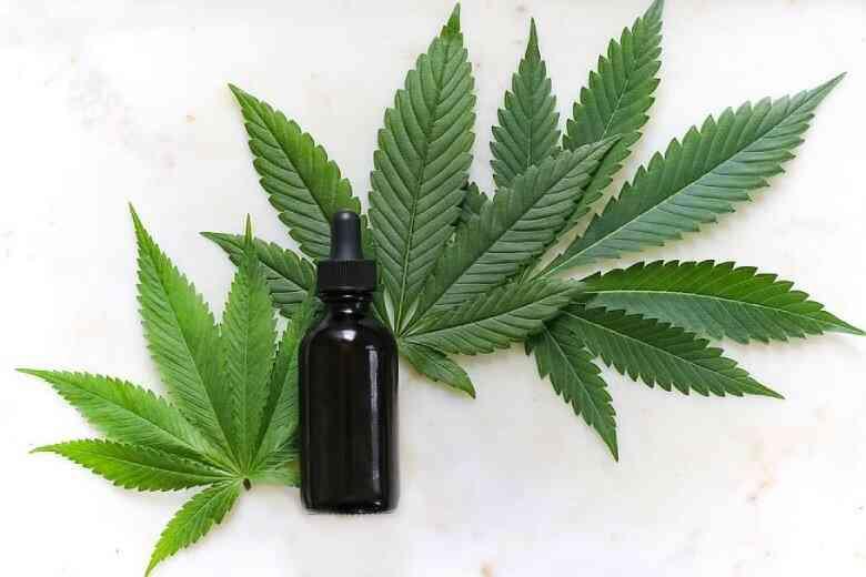 Inflorescenze di cannabis legale e olio di CBD su voli nazionali
