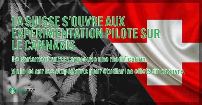 La Suisse s'ouvre à l'expérience du cannabis.