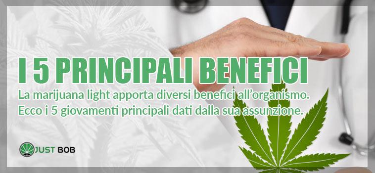 I 5 principali benefici della marijuana