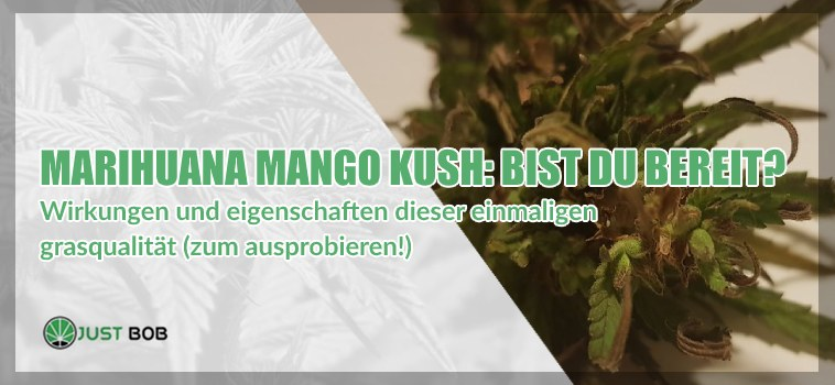 Marihuana Mango Kush