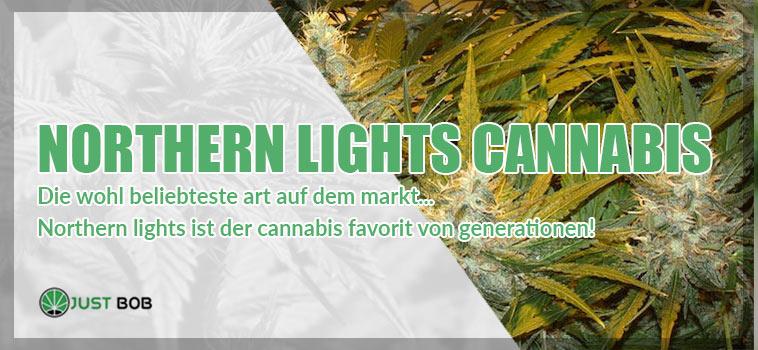Wir stellen vor: Northern Lights Cannabis