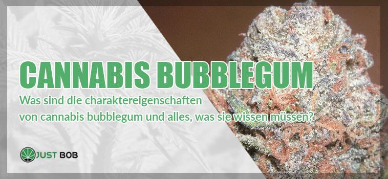 Cannabis BubbleGum: Eigenschaften, Aromen und Wirkungen