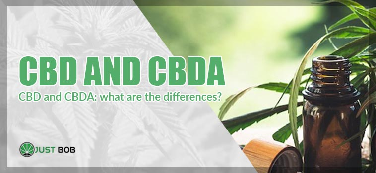CBD and CBDA: what are the differences?