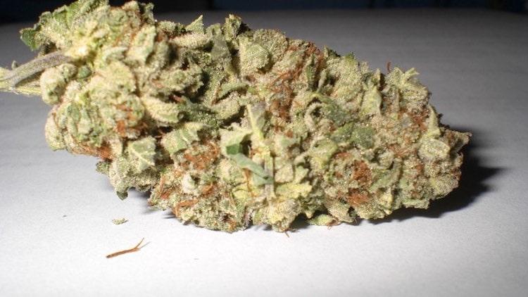 The benefits of legal marijuana