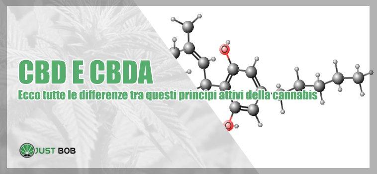 CBD e CBDA: quali sono le differenze?