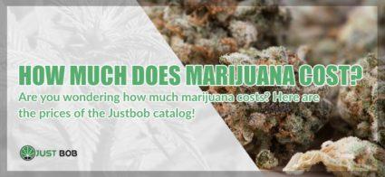 How much does marijuana cost?