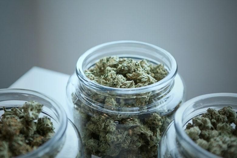 Tipps zur Lagerung von Marihuana