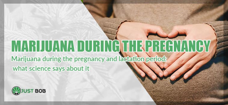 Marijuana during the pregnancy and lactation period