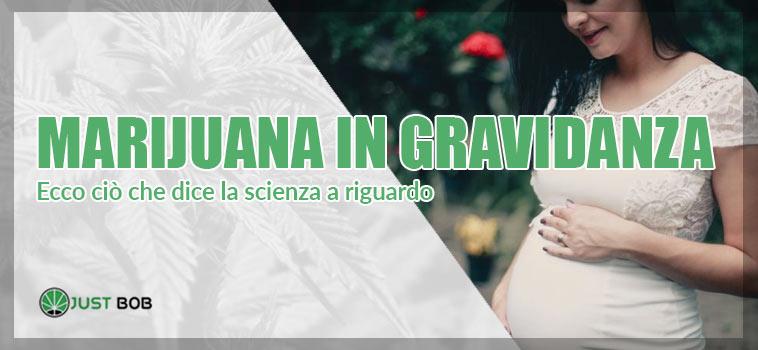Marijuana--in-gravidanza