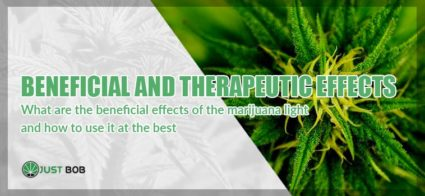 Marijuana: beneficial and therapeutic effects