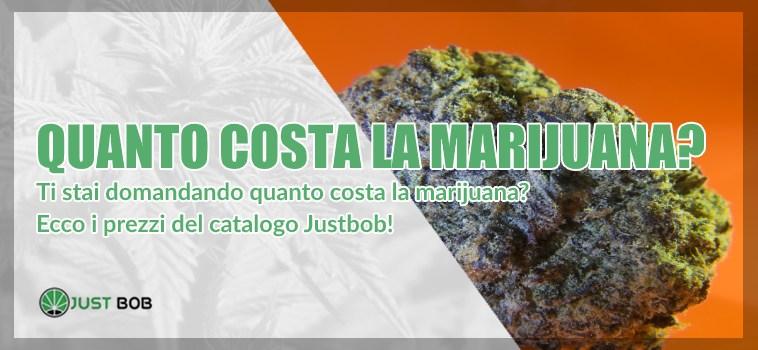 Quanto costa la marijuana?