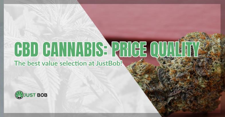 CBD cannabis: average price and top quality