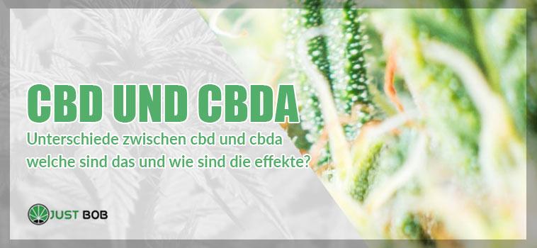 CBD und CBDA: Was sind die Unterschiede?