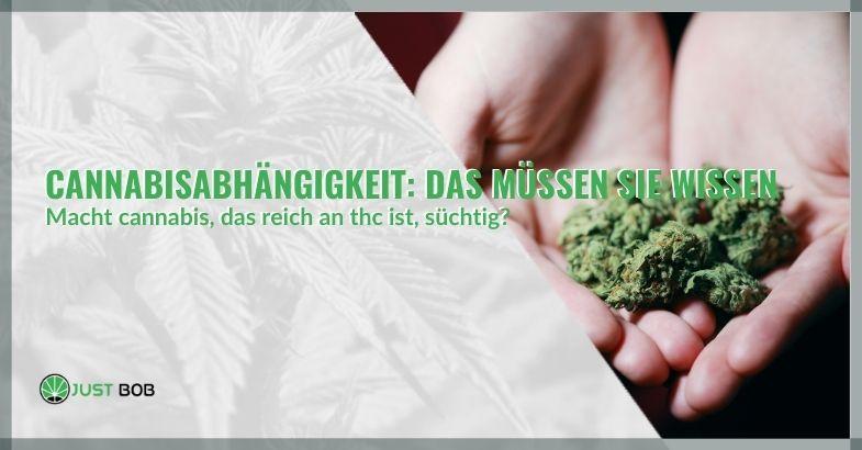 Cannabisabhängigkeit: Das müssen Sie wissen