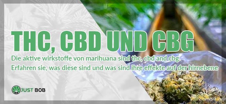 Marihuana: THC, CBD und CBG
