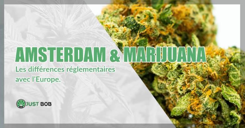 Sur Justbob, vous achetez du cannabis légal