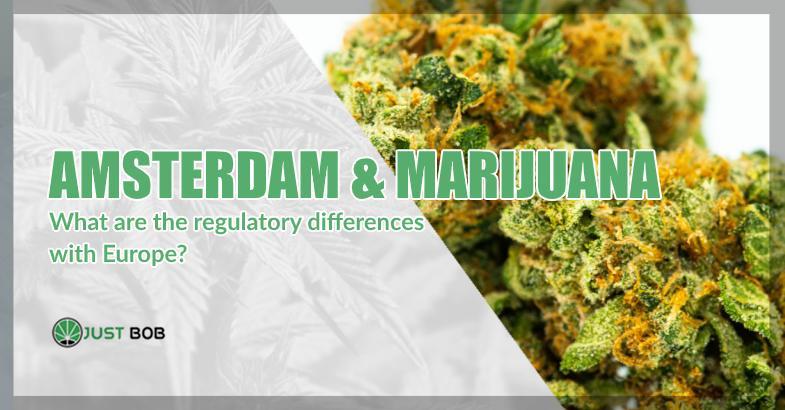 At Justbob, you REALLY buy legal CBD cannabis.