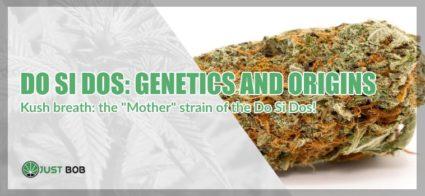 Do Si Dos: genetics and origins